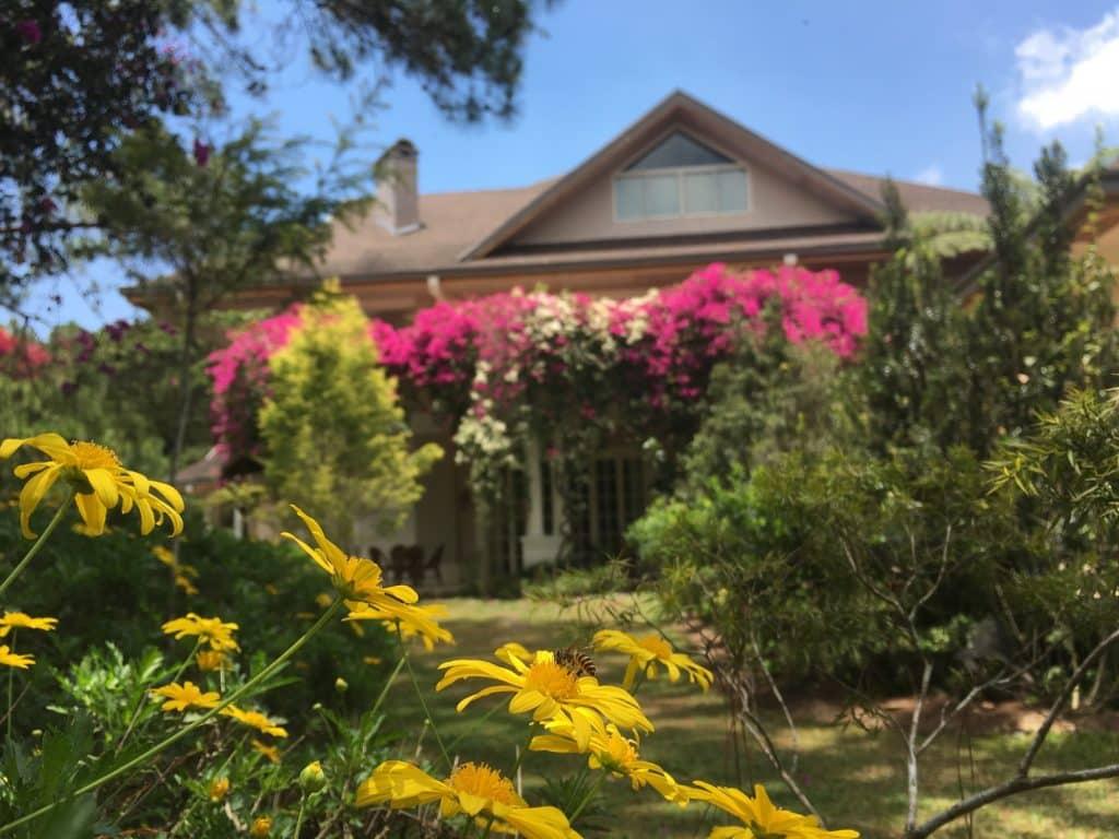 Frangeli House Baguio 01